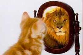 narcissistisk personlighedsforstyrrelse